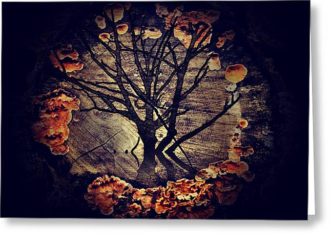 Nature Abstract Greeting Cards - Tree Circle 2 Greeting Card by Milliande Demetriou