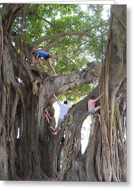 Childre Greeting Cards - Tree Climbers One Greeting Card by Andi M Gerich