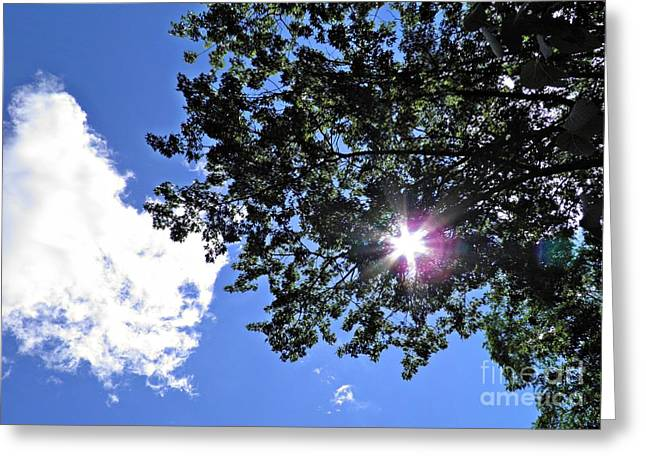 Clouds And Sun Greeting Cards - Tree Cloud and Sun Greeting Card by Sarah Loft