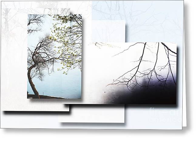 Waterscape Mixed Media Greeting Cards - Tree Collage 3 Greeting Card by Anahi DeCanio