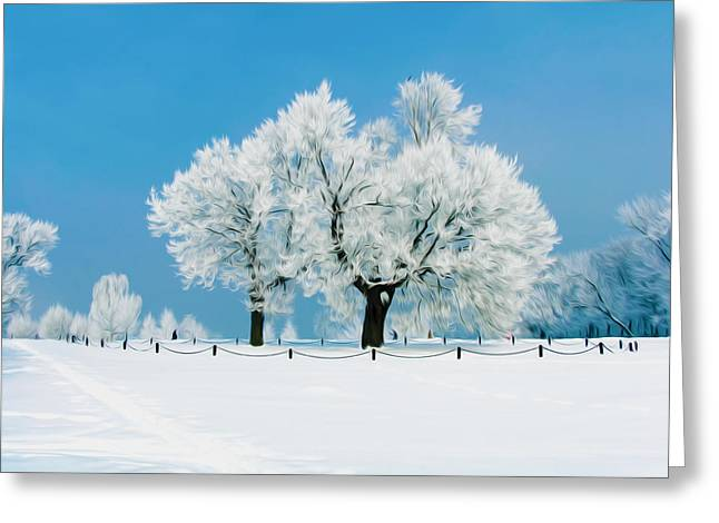 Landscape Greeting Cards - Tree covered snow Greeting Card by Lanjee Chee