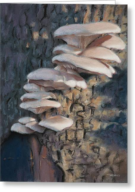 Fungi Paintings Greeting Cards - Tree Ears Greeting Card by Christopher Reid
