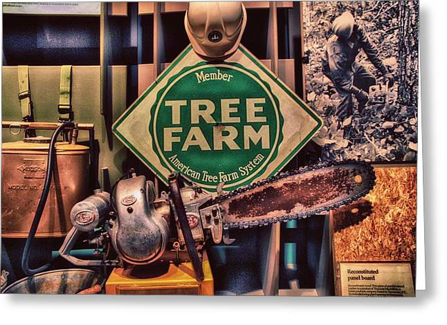 Minnesota Grown Greeting Cards - Tree Farm Greeting Card by Todd and candice Dailey