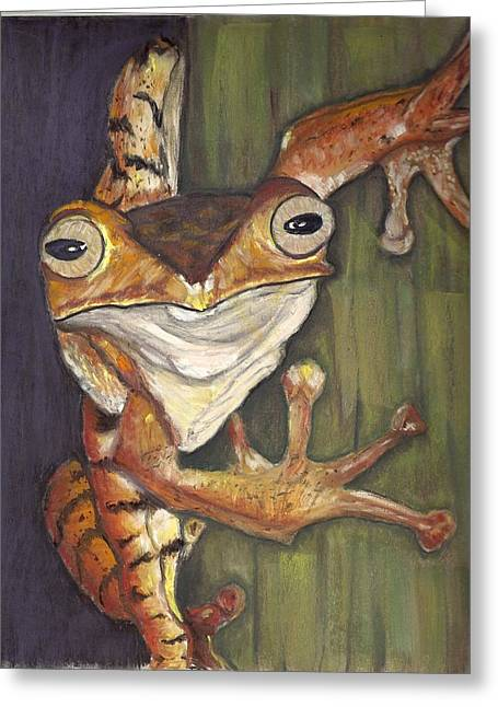 Amphibians Pastels Greeting Cards - Tree Frog Greeting Card by Jay Johnston