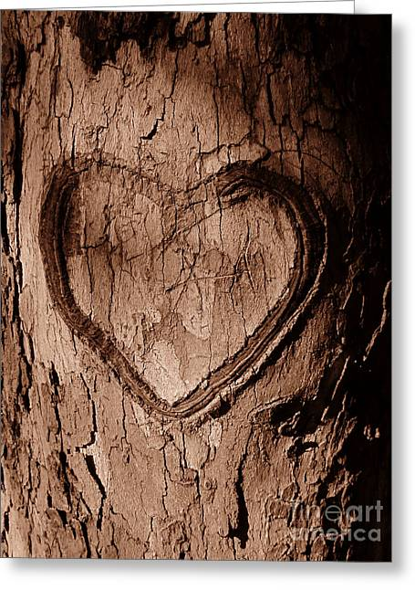 Decor Photography Pyrography Greeting Cards - Tree Heart Greeting Card by Nathan Little