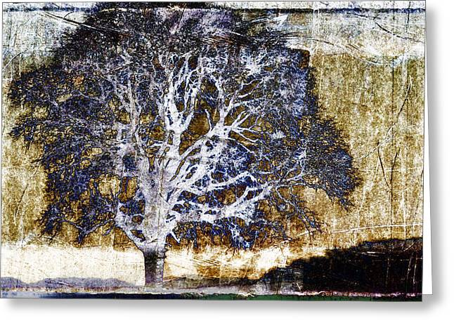 Abstract Reflections Greeting Cards - Tree in Metal Greeting Card by Carol Leigh