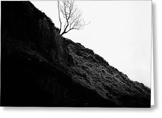 Tree in mist ii Greeting Card by John Farnan