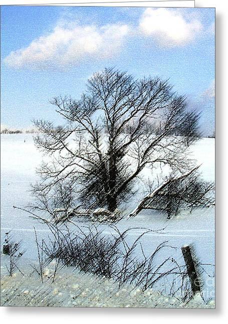 Dantzler Photo Art For Sale Greeting Cards - Tree in Snow Greeting Card by Andrew Govan Dantzler