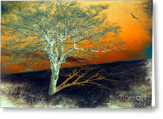 Abstract Art For Sale Digital Art Greeting Cards - Tree in Snow in the Blue Ridge II Greeting Card by Dan Carmichael