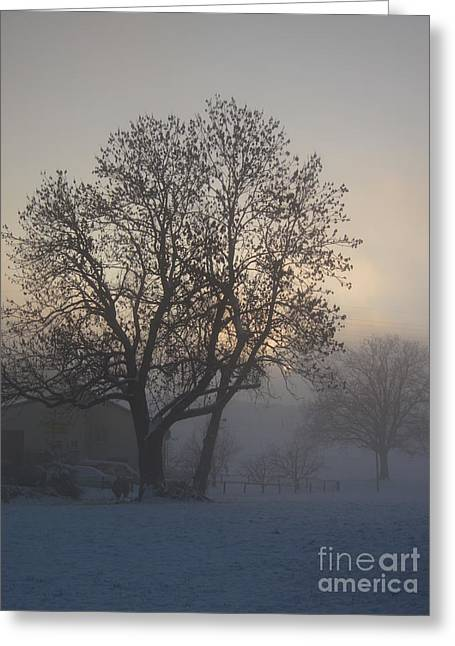 Snowy Day Greeting Cards - Tree in the foggy winter landscape Greeting Card by Amanda Mohler
