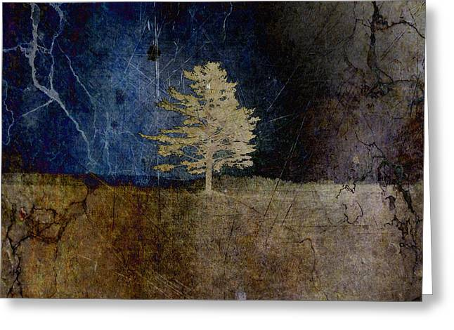 Square Format Greeting Cards - Tree Journey - sp44a Greeting Card by Variance Collections