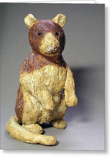 Forest Ceramics Greeting Cards - Tree Kangaroo  Greeting Card by Jeanette K