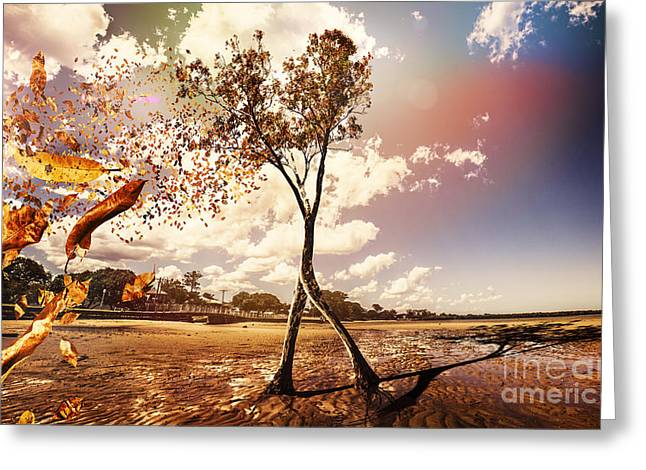 Tree Leaves On A Sea Change Greeting Card by Jorgo Photography - Wall Art Gallery