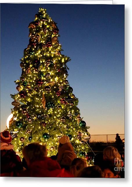 California Beach Art Greeting Cards - Tree Light in Ritz Carlton Half Moon Bay Greeting Card by PlusO FineArt
