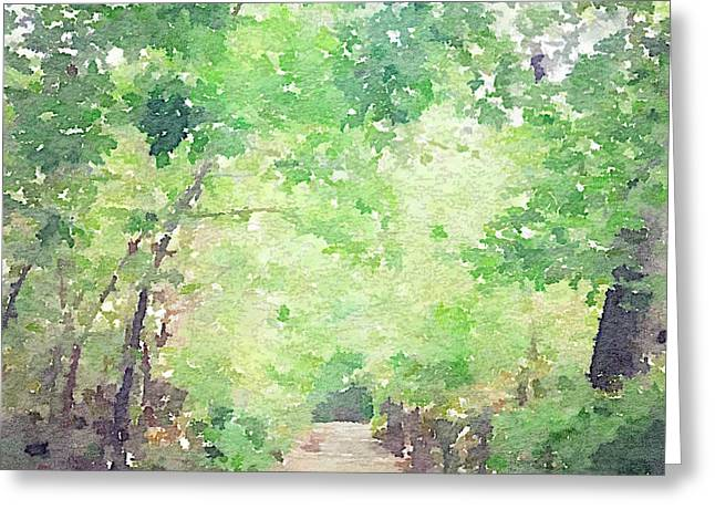 Prospects Greeting Cards - Tree Lined Path Greeting Card by Ariane Moshayedi