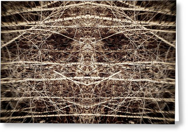 Tree Mask Greeting Card by Wim Lanclus