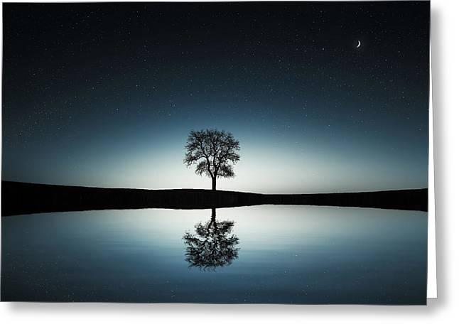 Exciting Greeting Cards - Tree near lake at night Greeting Card by Bess Hamiti