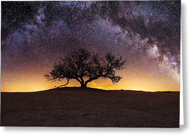 Light Pollution Greeting Cards - Tree of Wisdom Greeting Card by Aaron J Groen