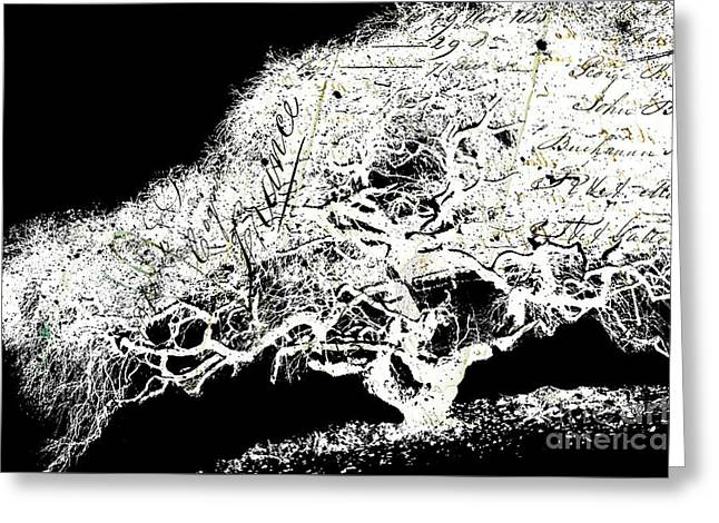 Stationery Mixed Media Greeting Cards - Tree of Wisdom - Black and White Tree silhouette Greeting Card by Anahi DeCanio - ArtyZen Studios