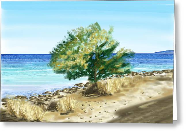 Tree on the beach Greeting Card by Veronica Minozzi