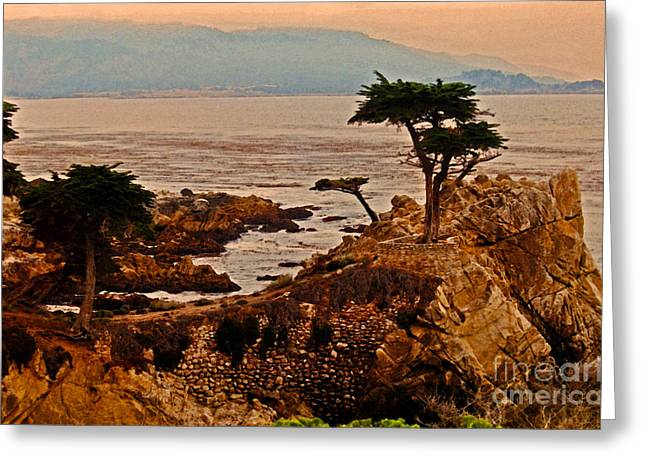 The Lone Cypress Greeting Cards - Tree On The Rock  Greeting Card by Lydia Holly