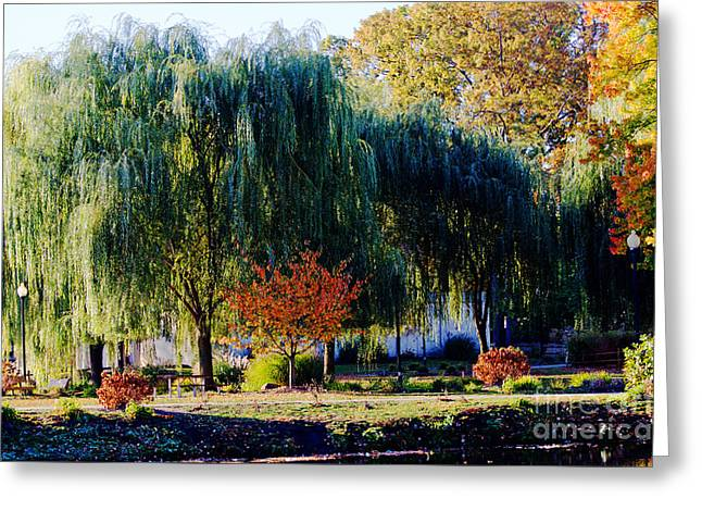 Weeping Greeting Cards - Autumn Willow Trees Landscape Greeting Card by ArtyZen Studios - ArtyZen Home