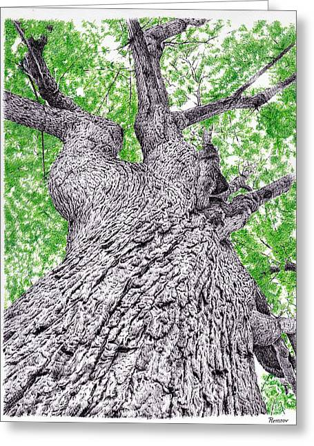 Coloured Bark Greeting Cards - Tree pen drawing 4 Greeting Card by Heidi Vormer