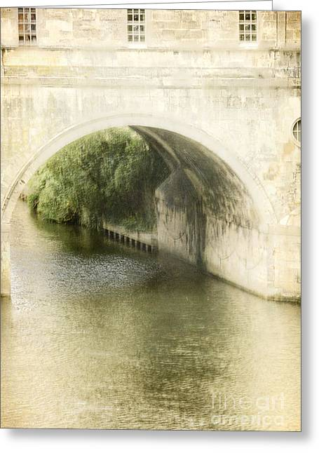 Pulteney Bridge Greeting Cards - Tree Reflection Greeting Card by Margie Hurwich
