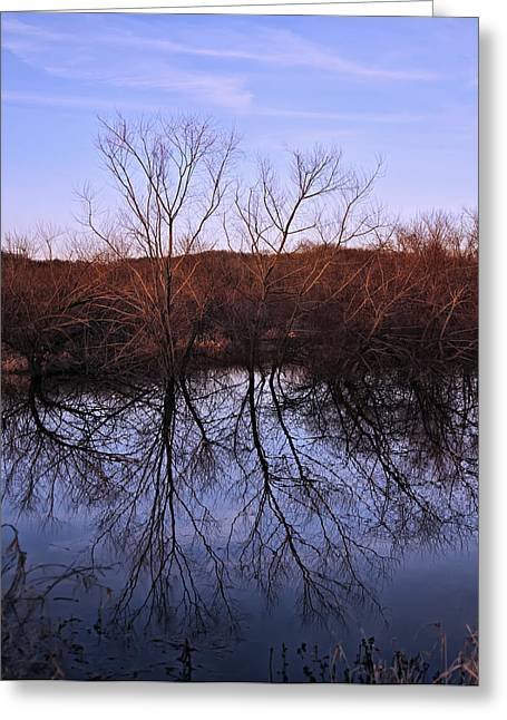 Landscape Posters Greeting Cards - tree reflection on Wv pond Greeting Card by Chris Flees