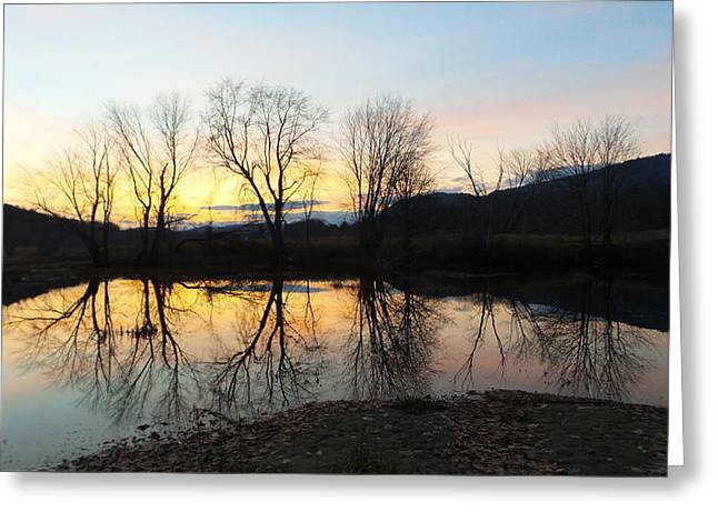 Androscoggin Greeting Cards - Tree Reflections Landscape Greeting Card by Mike Breau