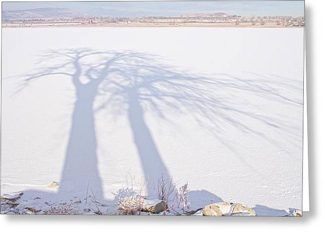James Powders Greeting Cards - Tree Shadow Puppets Greeting Card by James BO  Insogna