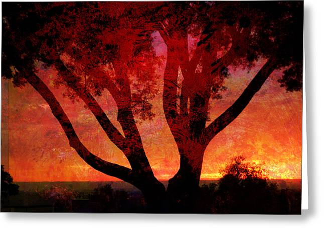 Photo Gallery Mixed Media Greeting Cards - Tree Silhouette in Sunset Abstraction Greeting Card by John Fish