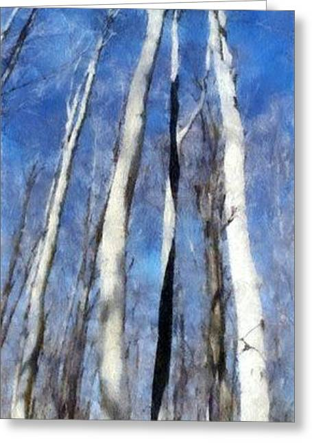White Digital Art Greeting Cards - Tree Stand in Early Spring Greeting Card by Michelle Calkins