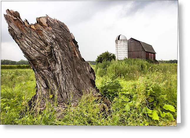 Barn And Silo Greeting Cards - Tree stump and barn - New York State Greeting Card by Gary Heller