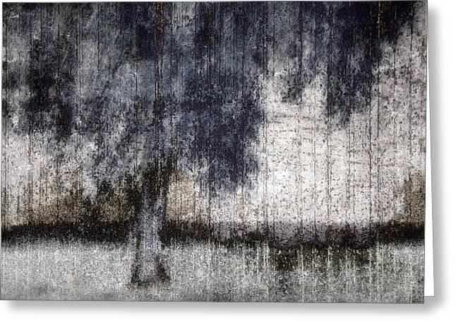 Tree Through Sheer Curtains Greeting Card by Carol Leigh