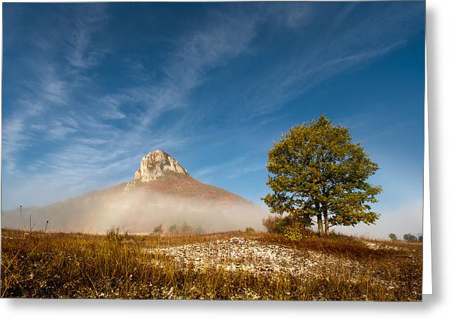 Prairie Landscape Greeting Cards - Tree under The Hill Greeting Card by Davorin Mance