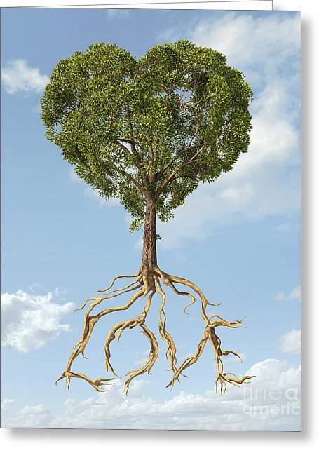 Caring Mother Greeting Cards - Tree With Foliage In The Shape Greeting Card by Leonello Calvetti