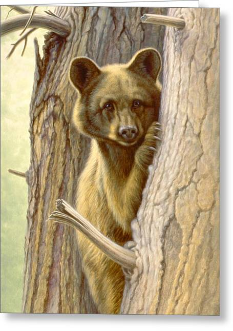 Black Bear Greeting Cards - Treed Greeting Card by Paul Krapf