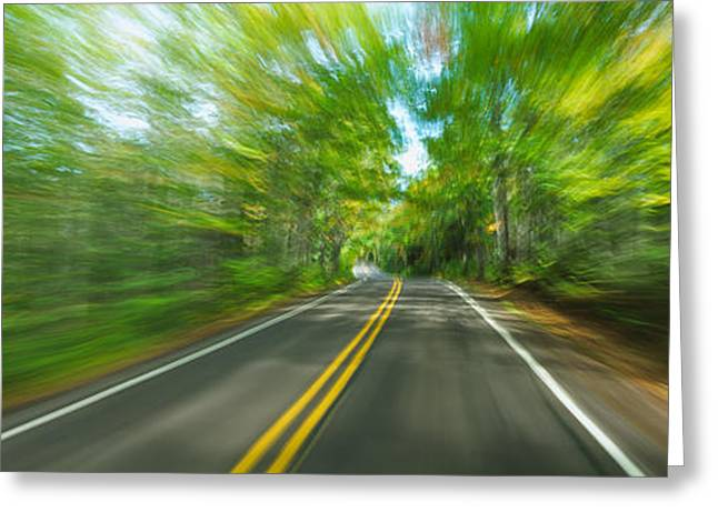On The Way Greeting Cards - Treelined Road Viewed From A Moving Greeting Card by Panoramic Images