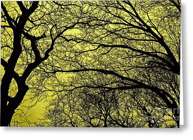 Tree Lines Digital Greeting Cards - Trees Abstarct Yellow Greeting Card by Nishanth Gopinathan