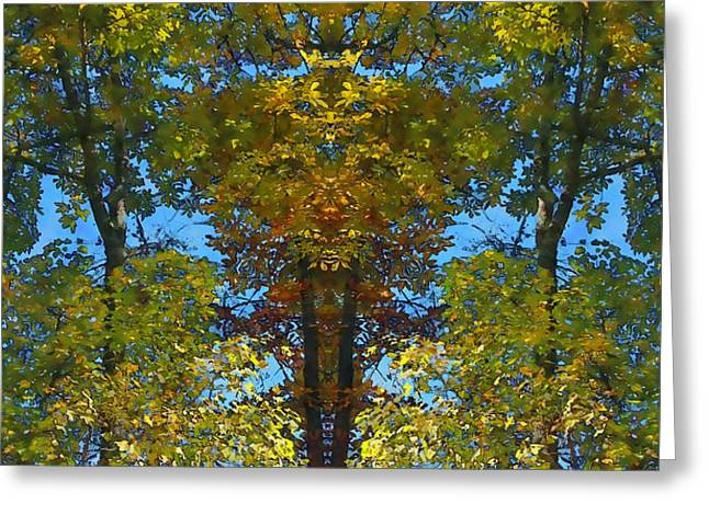 Trees Alive Greeting Card by Susan Leggett
