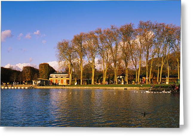 Chateau Greeting Cards - Trees Along A Lake, Chateau De Greeting Card by Panoramic Images