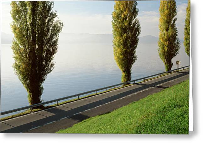 Zug Greeting Cards - Trees Along A Lake, Lake Zug Greeting Card by Panoramic Images
