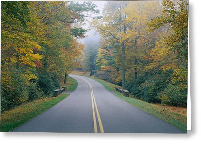 Double Yellow Line Greeting Cards - Trees Along A Road, Blue Ridge Parkway Greeting Card by Panoramic Images
