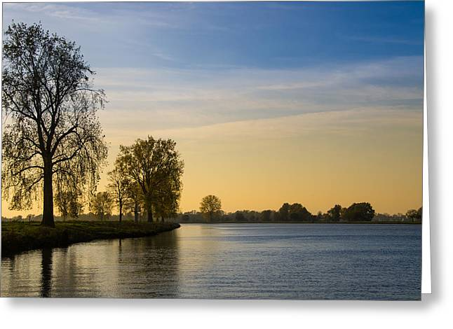 Gelderland Greeting Cards - Trees along the Maas River Greeting Card by Engeline Tan