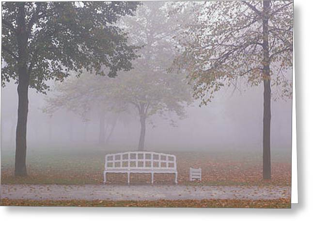 Envelop Greeting Cards - Trees And Bench In Fog Schleissheim Greeting Card by Panoramic Images