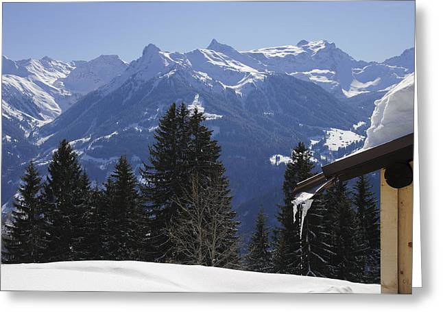 Winterly Greeting Cards - Trees and mountains in winter Greeting Card by Matthias Hauser
