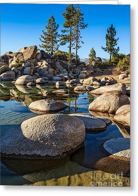 Trees And Rocks Greeting Card by Jamie Pham