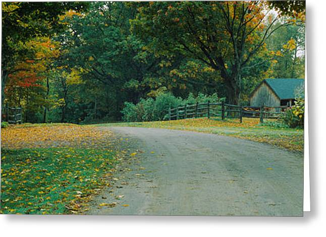 Fall Grass Greeting Cards - Trees At A Roadside, Vermont, Usa Greeting Card by Panoramic Images