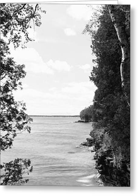 Lakeshore Greeting Cards - Trees At The Lakeside, Cave Point Greeting Card by Panoramic Images